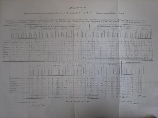 Cuadro de enfermedades en hospitales militares, Memoria de Guerra y Marina, 1900-1901, anexo núm. 15.